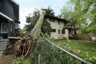 charlotte-storm-damage-tree-e1506452472307 Storm Damage Restoration