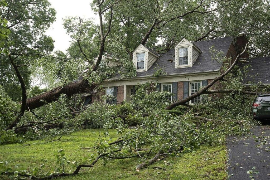 storm damage in Michigan
