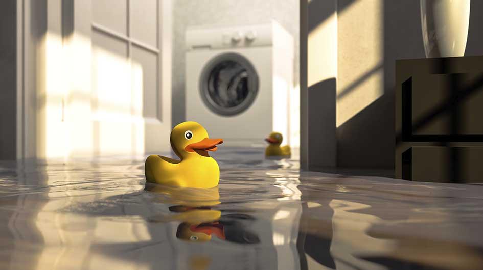 michigan flooded basement