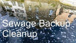 sewage backup cleanup